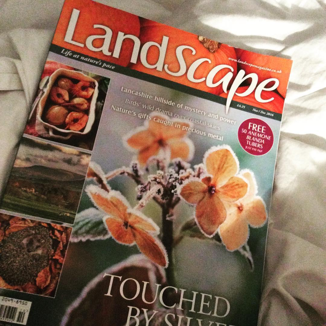 simpleinseptember2016 Day 22 A magazine temporarily misplaced until today! Continuehellip