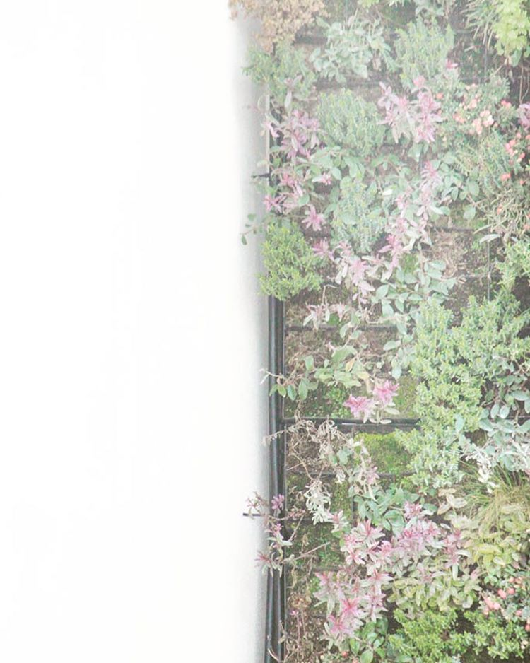 Living wall halfandhalfproject nothingisordinary Continue reading rarr